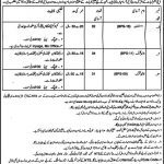 Deputy Commissioner Office Kohat Jobs Written Test Result Answer Keys NTS