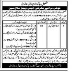 Today Govt Jobs Pakistan – THQ Hospital Sillanwali Sargodha Jobs