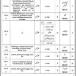 District Session Judge Office Muzaffargarh Jobs 2021