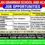 Latest Jobs in Faisalabad Al Falah Grammar School Academy