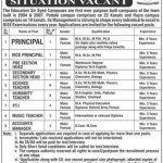 The Educators Sir Syed Campus Pattoki Jobs – Jang News Job Today