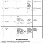 Women Development Department Jobs Siba Sukkur IBA Testing Service Slip