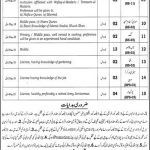 DSJ District Session Judge Narowal Jobs CTSPAK Roll No Slip
