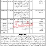 District Session Courts Swat Jobs 2021 Today KPK Govt Jobs
