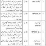 Pakistan Scouts Cadet College Batrasi Mansehra Jobs Government jobs Today Pakistan KPK