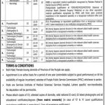 Services Hospital Lahore Jobs 2021 Interview Schedule Test Date Result Services Institute of Medical Sciences Lahore