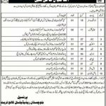 Balochistan Residential College Turbat Jobs CTSP Roll No Slip