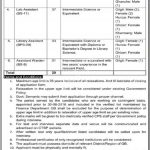 Directorate of Education Colleges ADMIN STAFF Jobs CTSP Result Answer Keys Merit List Government of Gilgit-baltistan