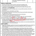 Directorate of Prosecution Jobs KPK CTS Roll No Slip
