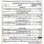 Social Welfare and Bait ul Mal Punjab Jobs CTS Roll No Slip