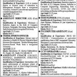 Today Govt Jobs in Pakistan Community Sports Council CSCP Jobs 2021