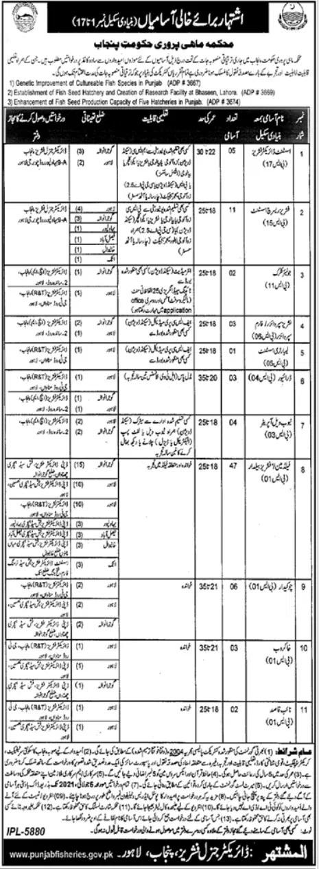 Fisheries Department Punjab Jobs