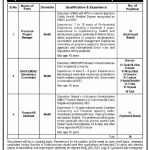 Project Management Unit PMU Jobs Sindh Govt Jobs 2021 today