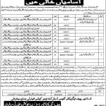 District Education Authority Mianwali Today Jobs Today Govt of Punjab jobs