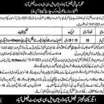 Latest Govt Punjab Irrigation Department Faisalabad Jobs Today 2021