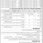 Today Frontier Corps FC South Local Government KPK Jobs 2021