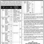 Sindh Information Department Jobs | Sindh govt jobs 2021 Today