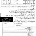Government Jobs Pak At Federal Service Tribunal August 2021