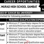 Murad High School Gambat Jobs STS Roll No Slip Siba Testing Service