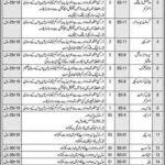 Today govt of Punjab Latest Jobs At Pakistan Bait ul Mal PBM
