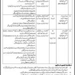 Today New Jobs Govt of Sindh At Trade Development Authority of Pakistan TDAP