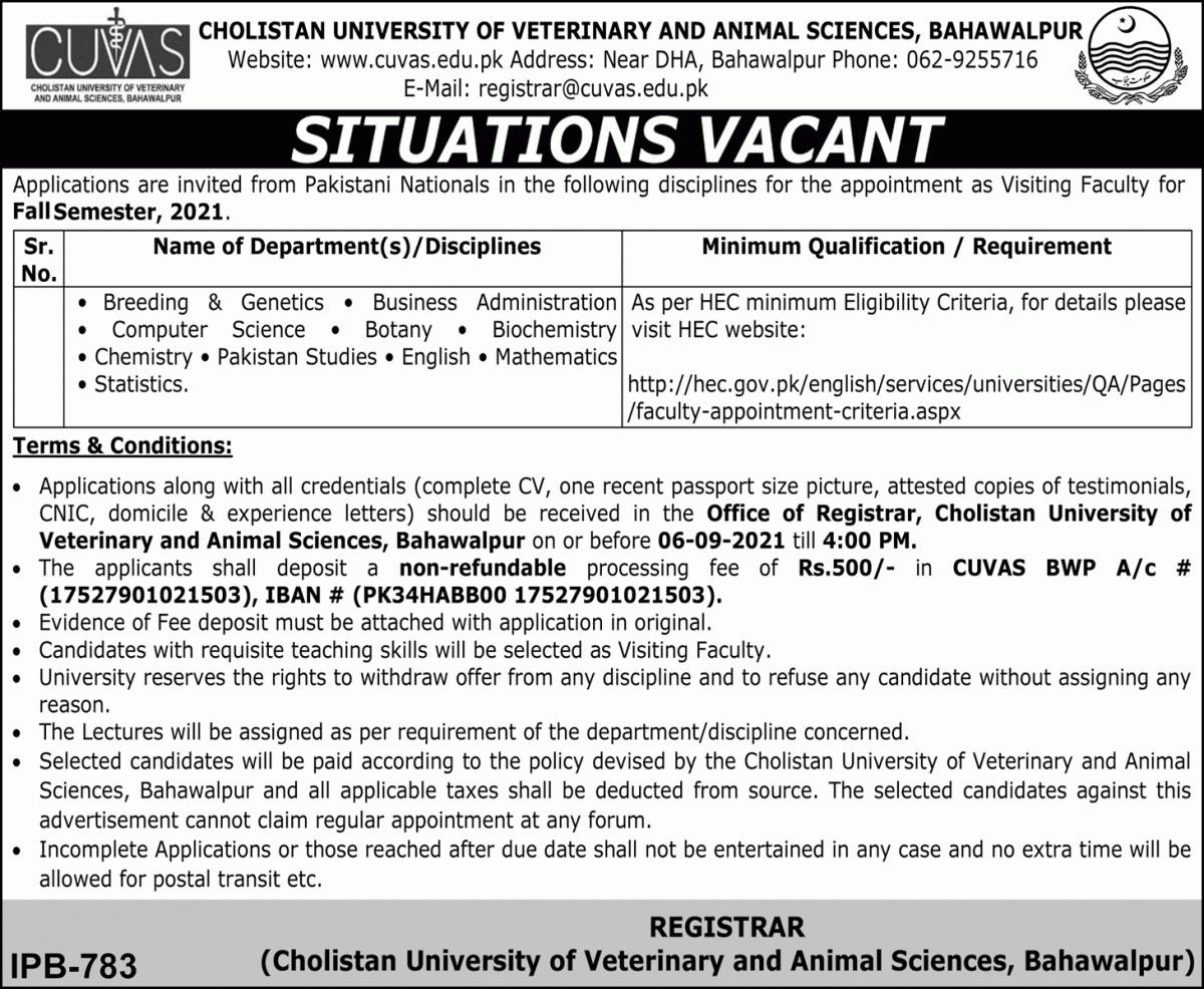 Today Govt Teaching Jobs in Pakistan 2021 At CUVAS Cholistan University of Veterinary and Animal Sciences Bahawalpur