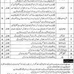 Government Jobs in Faisalabad 2021 At Faisalabad PO Box No 55 GPO