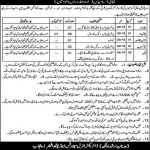 Today Govt Jobs in Lahore 2021 At Lahore Sports and Youth Affairs Department